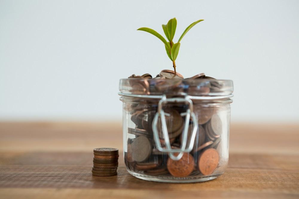 dinheiro crescendo como uma planta