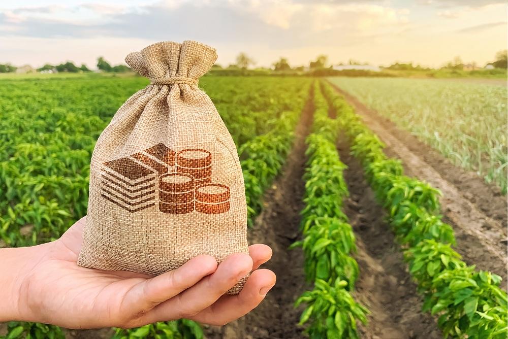saco de investimento em agricultura