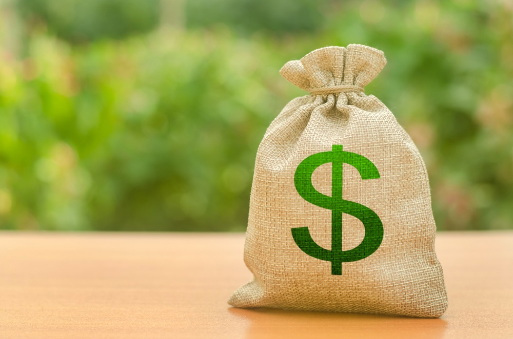 Saco de dinheiro simbolizando investir em tesouro direto em um fundo de natureza